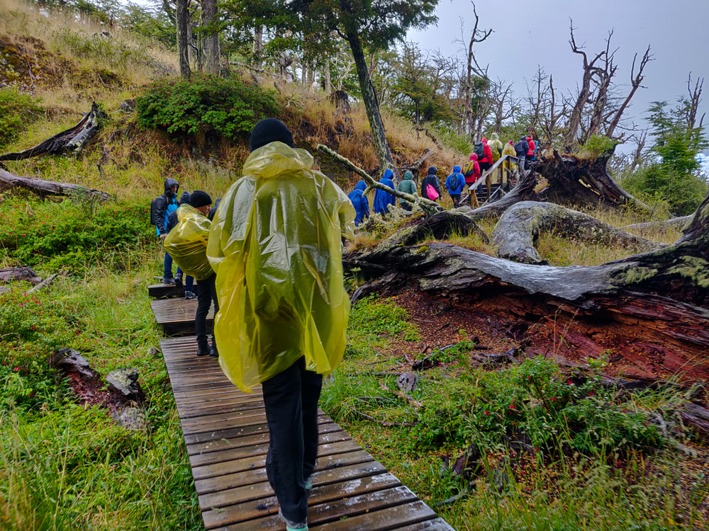 Wooden walkways on our way to Perito Moreno Glacier trekking