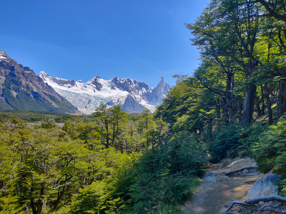 Glacier in the distance with a nice, shaded trail in the foreground