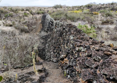 Isabela Island – Tortoises, Flamingos, and the Wall of Tears