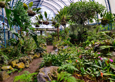Welcome to Quito and Quito Botanical Gardens